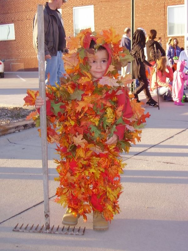 Young boy in a costume of orange leaves.